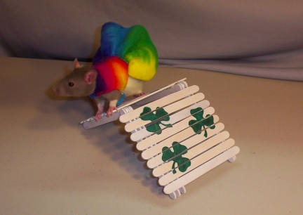 Katie K on the A Frame made for hamsters for the upcoming St. Pat's Day photo shoot